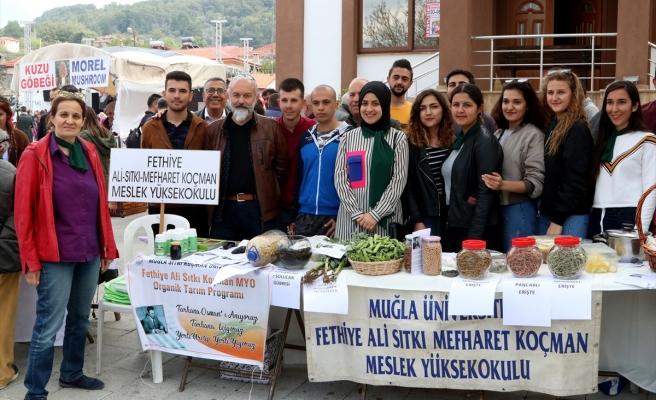 11.DASTAR VE KUZUGÖBEĞİ MANTAR FESTİVALİ BAŞLADI