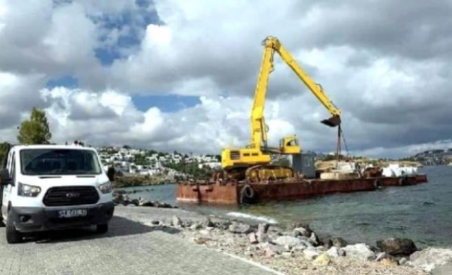 Bodrum'da, Akdeniz Foklarının Üreme Alanında Kepçeli Çalışma!