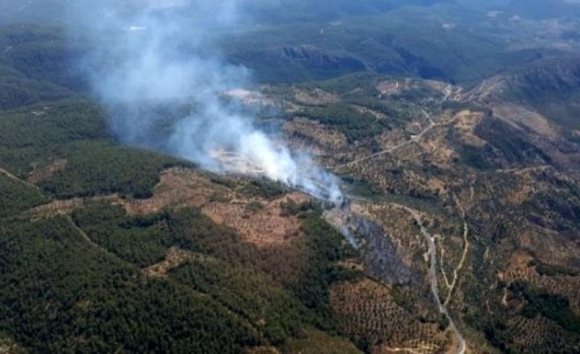 Milas'ta Çıkan Yangını Söndürme Çalışmaları Devam Ediyor
