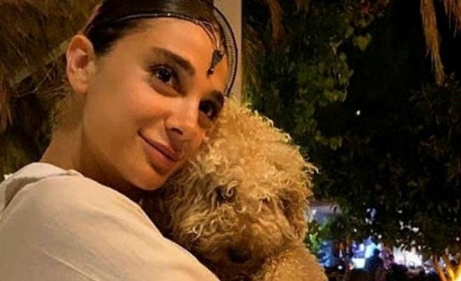 Muğla Başsavcılığı'ndan Pınar Gültekin'le İlgili Yazılı Açıklama!