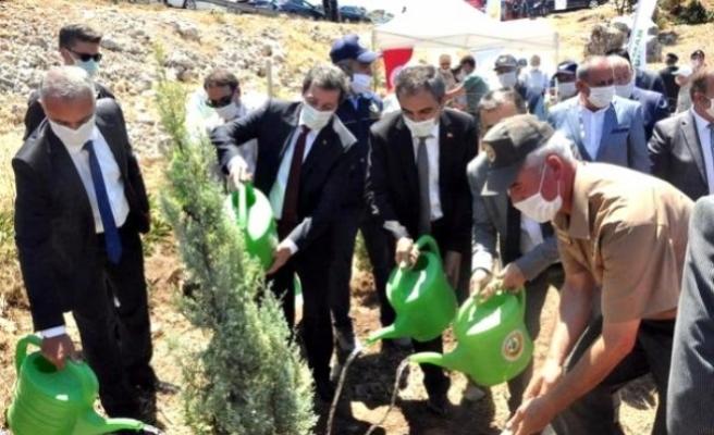 Muğla'da 15 Temmuz Şehitleri Anısına Fidan Dikildi