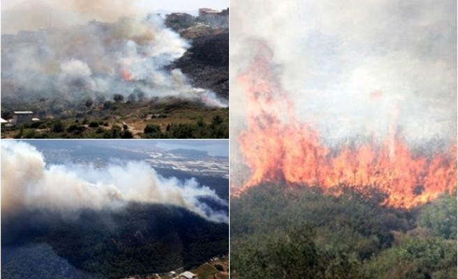 İzmir'in İki İlçesinde Orman Yangını Çıktı!