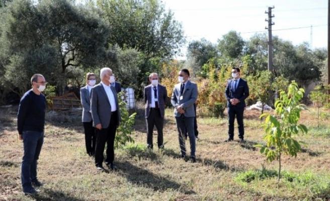 """Başkan Gürün: """"Muğla Turizmden Daha Fazlasını Tarımdan Kazanabilir"""""""