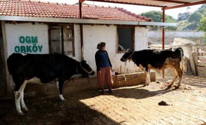 Muğla ve Aydın'da 182 Aileye 4,5 Milyon Lira ORKÖY Desteği Sağlandı