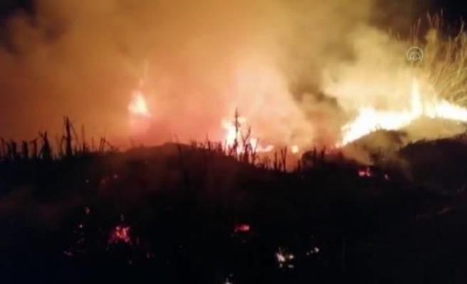 Fethiye'de Sazlık Alanda Çıkan Yangın Söndürüldü