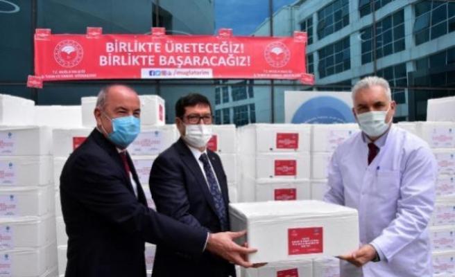 'Siz Bizim Her Şeyimizsiniz' Sloganıyla Muğla'da Sağlıkçılara 20 Ton Balık Dağıtıldı