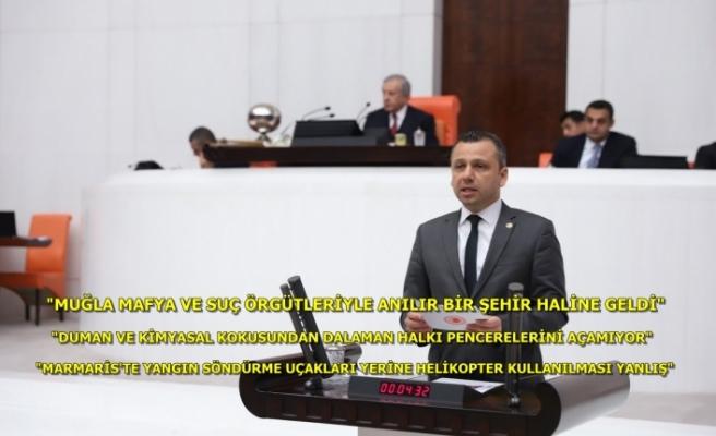 CHP'li Erbay; Muğla'da Yanan Alanların Ranta Açılmasına İzin Vermeyeceğiz