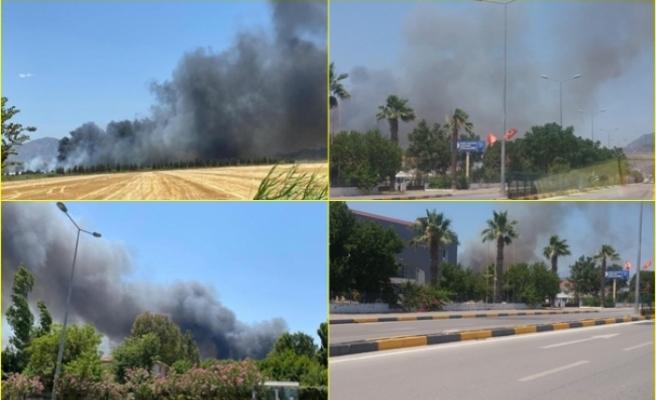 Dalaman'da Dün Söndürülen Yangın, Bugün Yeniden Başladı!