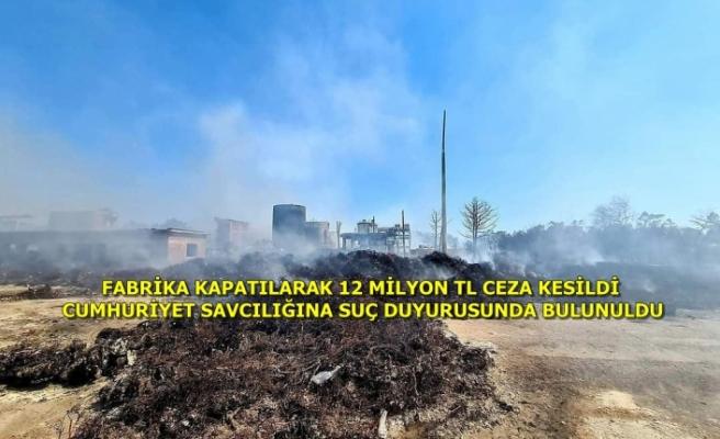 Dalaman'daki Kağıt Fabrikası Çıkan Yangınlar Sonucu Kapatıldı!