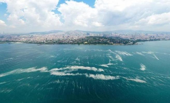 Marmara'da Yeni Felaket! Çınarcık Çukuru'nda, Hidrojen Sülfür Bulundu