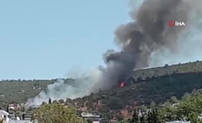 Bodrum'da Yangın Başladı