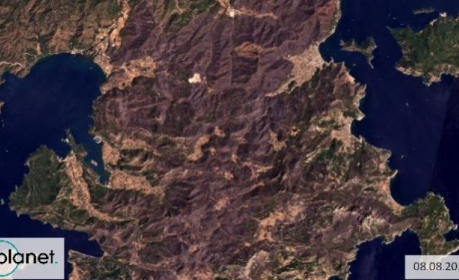 GREENPEACE, Yanan Alanların Uydu Görüntüsünü Paylaştı