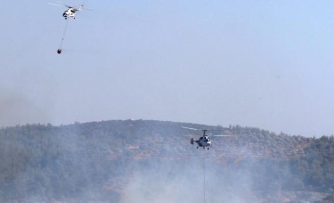 Bodrum'daki Orman Yangını 5 Saatte Kontrol Altına Alındı