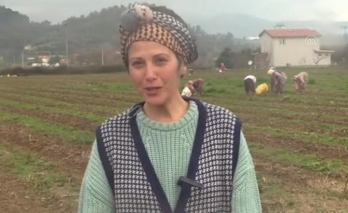 İstanbul'daki Kariyerini Bırakıp Muğla'da Kuşkonmaz Üreticisi Oldu