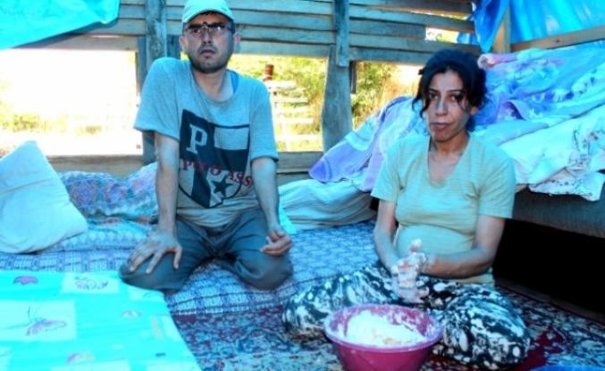 Muğla'da, Çadırda Yaşayan Engelli Çiftin Mücadelesi Yürek Burktu