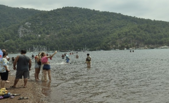 Tatil Sevdası Koronavirüsü Unutturdu Plajlar Doldu Taştı