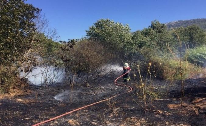 Yatağan'da 2 Hektarlık Ormanlık Alan Zarar Gördü