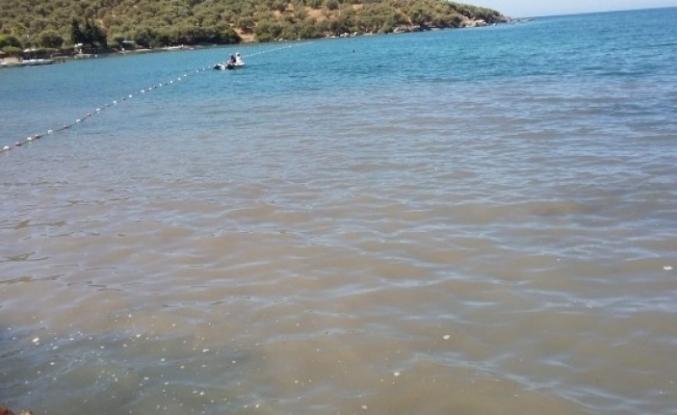 Milas'ta Kanalizasyon Suyu Denize Aktı