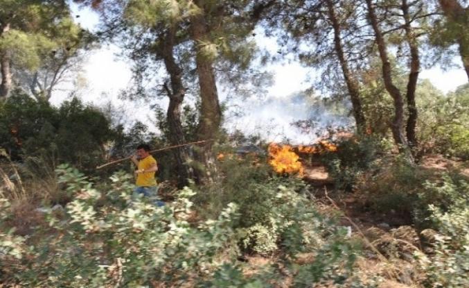 Muğla'da Aynı Gün Aynı Yerde Çıkan 6 Yangında Kundaklama Şüphesi!