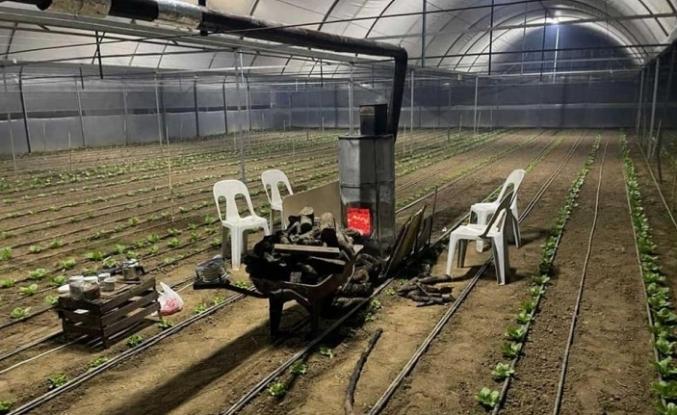Ula'da Sera Üreticileri Sobalı Don Nöbetinde