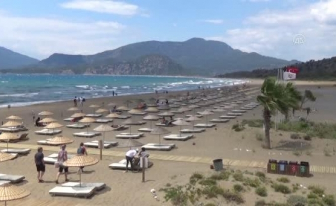İztuzu Plajı'ndaki Caretta Caretta Yuva Sayısı 300'e Ulaştı