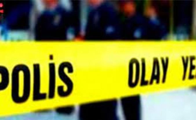 Milas'ta Kamyonet Kontrolden Çıktı: 1 Ölü!