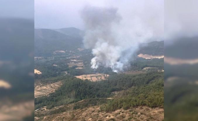 Kavaklıdere'de Bir Yangın Daha Çıktı