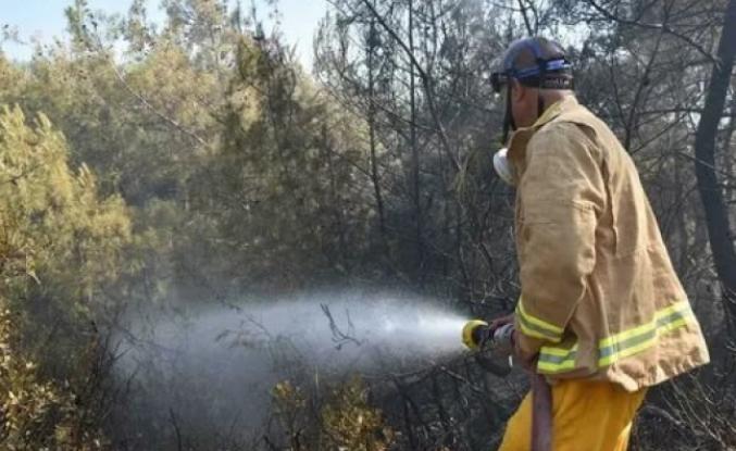 Ula'daki Ormanlık ve Zeytinlik Alanda Çıkan Yangın Söndürüldü