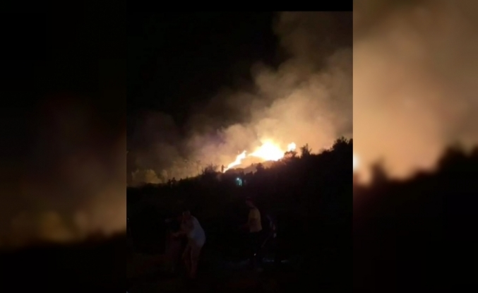 Yatağan'da Servis Aracında Başlayan Yangın Ormana Sıçradı