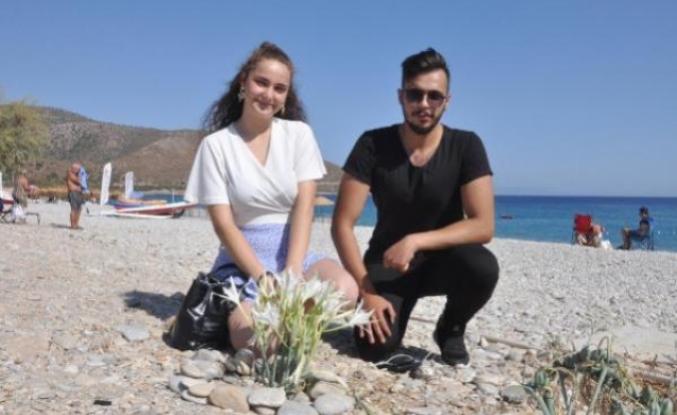 Datça'da Kum Zambakları Çiçeklendi; Koparmanın Cezası 80 Bin 465 TL