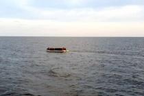 Bodrum'da 49 Düzensiz Göçmen Yakalandı