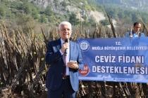 Muğla'da Ceviz Fidanı Dağıtımı Başladı