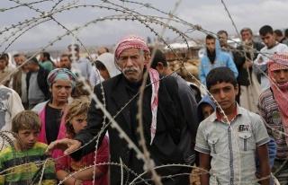 Suriyelilerle İlgili Doğru Bilinen Yanlışlar