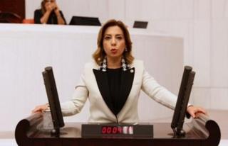 AK Parti Muğla Milletvekili Gökcan'dan Engelliler...
