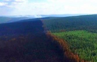 RUSYA'DA SİBİRYA ORMANLARI YANIYOR: 3 MİLYON HEKTAR