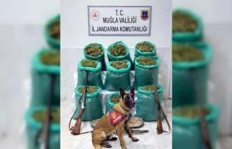 Jandarma'dan uyuşturucu tacirlerine büyük darbe