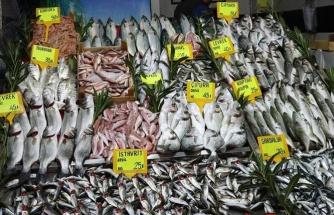 Muğla bölgesinde balık fiyatları el yakıyor!