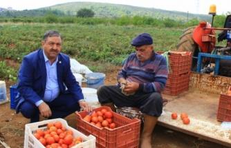 Ziraat Odası'ndan Çiftçilere Uyarı