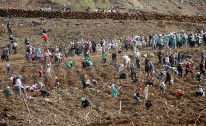 FETHİYE'DE 10 BİN 300 FİDAN TOPRAKLA BULUŞTU