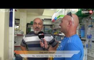 THE PET SHOP DALAMAN ŞUBESİ